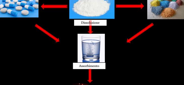 Test di dissoluzione e modelli in vitro